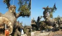 ISIS-Islamisten schänden êzîdîschen Friedhof (by Radio-Sawa)