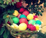 Besucher bringen bunt gefärbte Eier mit zum Heiligtum Lalish, wo sie sie unter den Anwesenden verteilen und zusammen das Fest begehen (privat)