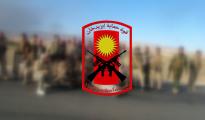 Wappen der Verteidigungskraft Êzîdxans (HPÊ)