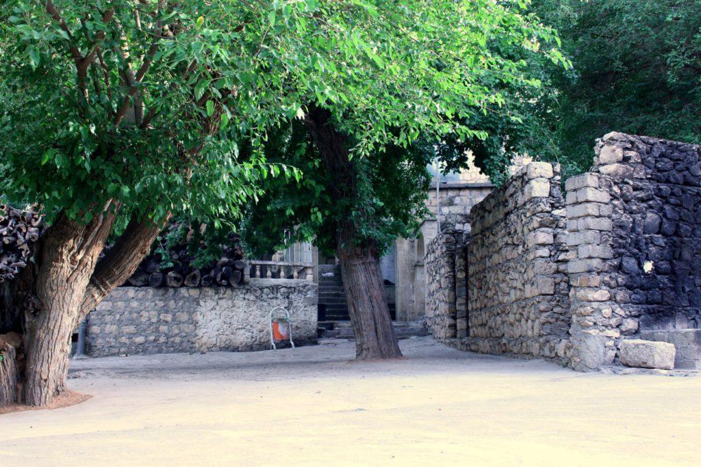 Bäume im Hof des Tempels Lalish (ÊP)
