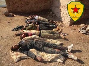 Durch die YPG getötete Islamisten. Veröffentlicht von der YPG kurz nach dem Massaker